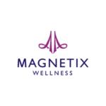 logo-magnetix